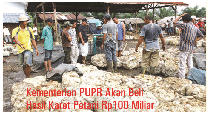 The Ministry of Public Works and Public Housing Will Buy Rp100 Billion Farmers' Natural Rubber